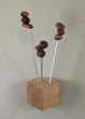 Seedling coat hanger with maple base